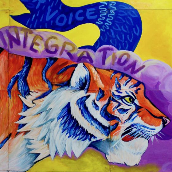 MS/HS 141: One Tiger, Many Stripes