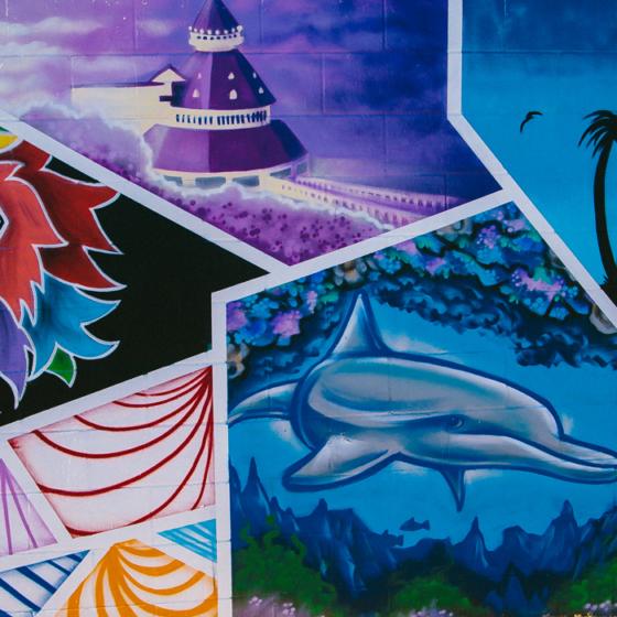 San Diego's Mosaic